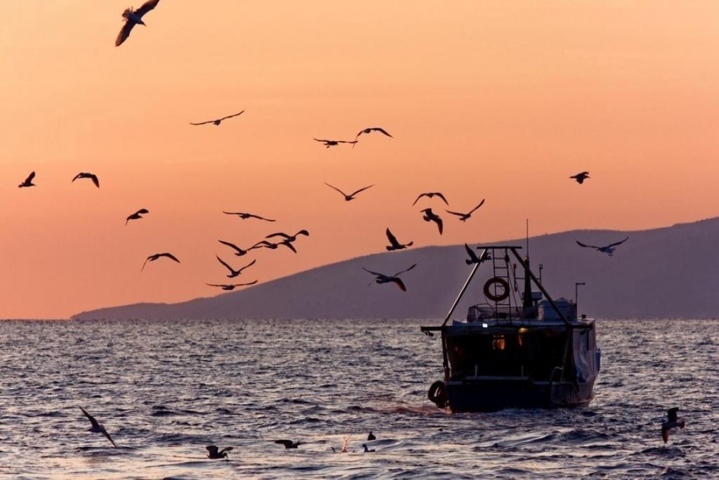 How Much Could Fishermen Potentially Make?